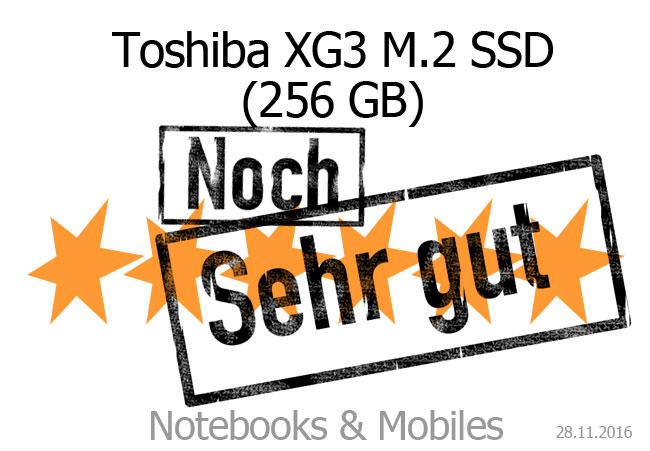 Toshiba XG3 M.2 SSD 256 GB