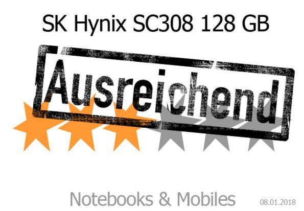 SK Hynix SC308 im Test