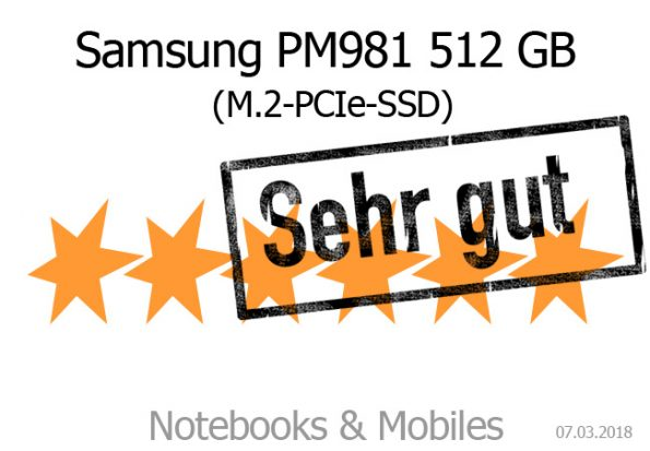 Samsung PM981