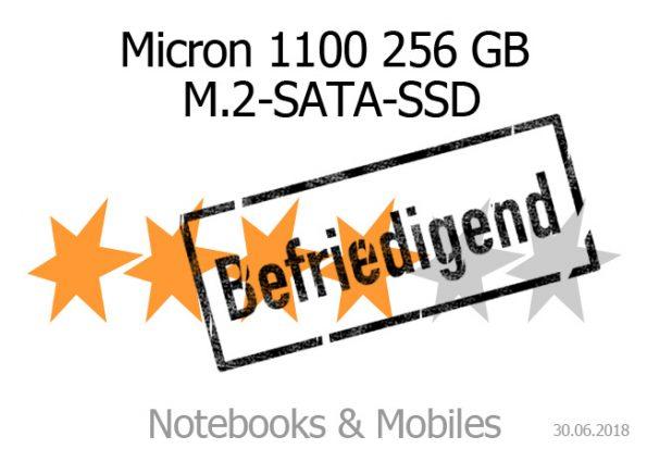 Micron 1100