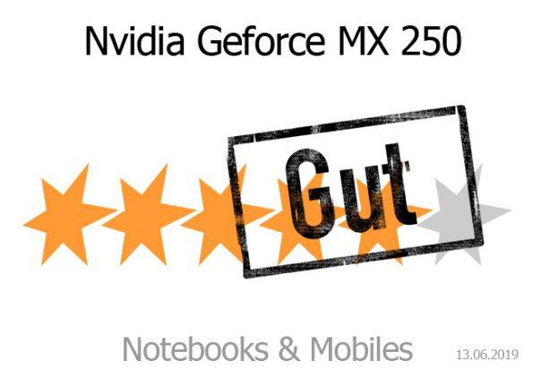 Nvidia Geforce MX 250