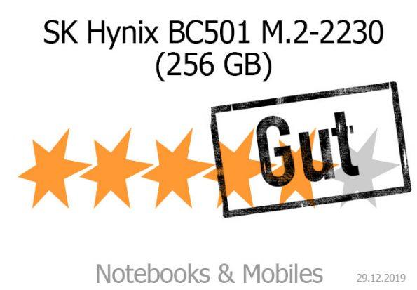 SK Hynix BC501 M.2-2230